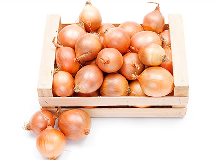 carry fresh of onions